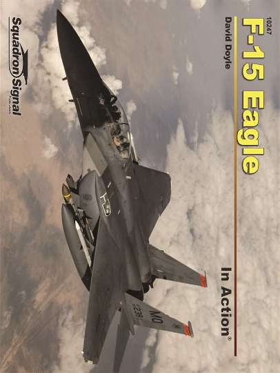 F-15 Eagle In Action